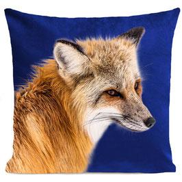 FOXY - KLEIN BLUE