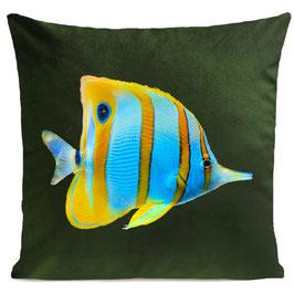 BUTTERFLY FISH - BOTTLE GREEN