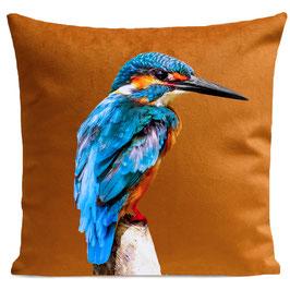 LITTLE BLUE BIRD - RUST