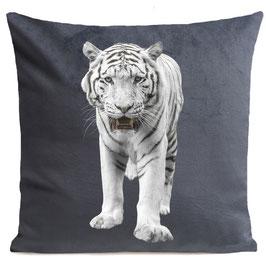 WHITE TIGER - MID GREY