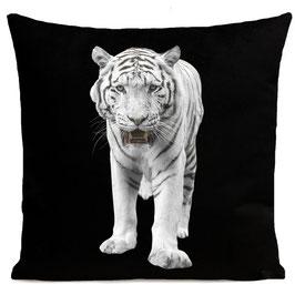 WHITE TIGER - BLACK