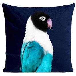 MISS BIRDY - DEEP BLUE