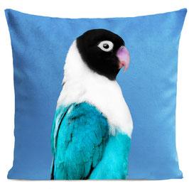MISS BIRDY - BRIGHT BLUE