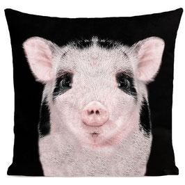 BABY PIG - BLACK