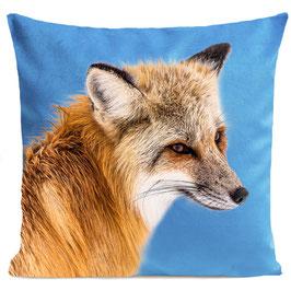 FOXY - BRIGHT BLUE