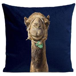 SMILING CAMEL - DEEP BLUE