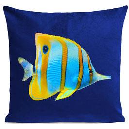 BUTTERFLY FISH - KLEIN BLUE