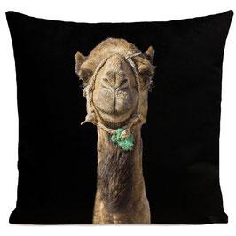 Smiling Camel - BLACK