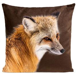 FOXY - BROWN
