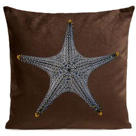 STAR FISH - BROWN