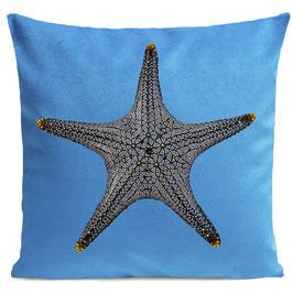 STAR FISH - BRIGHT BLUE