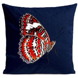 RED BUTTERFLY - DEEP BLUE