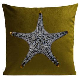 STAR FISH - OLIVE GREEN