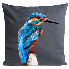 LITTLE BLUE BIRD - MID GREY