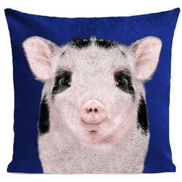 BABY PIG - KLEIN BLUE