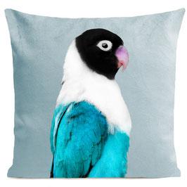 MISS BIRDY - MIAMI BLUE