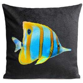 BUTTERFLY FISH - SLATE GREY