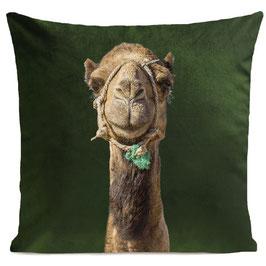 SMILING CAMEL - BOTTLE GREEN