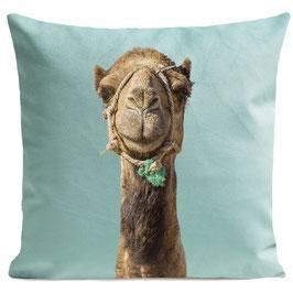 Smiling Camel - LIGHT GREEN