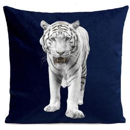 WHITE TIGER - DEEP BLUE