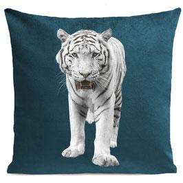 WHITE TIGER - SCANDINAVIAN BLUE
