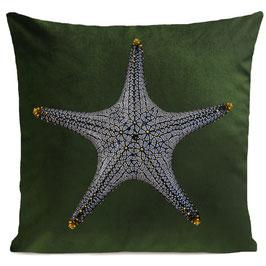 STAR FISH - BOTTLE GREEN