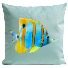 BUTTERFLY FISH - LIGHT GREEN