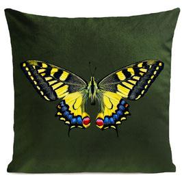 TIGER  BUTTERFLY  - BOTTLE GREEN