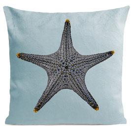 STAR FISH - MIAMI BLUE