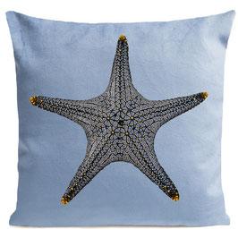 STAR FISH - PASTEL BLUE