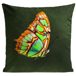 ORANGE BUTTERFLY - BOTTLE GREEN