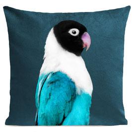 MISS BIRDY - SCANDINAVIAN BLUE