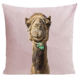 Smiling Camel - LIGHT PINK