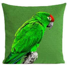 GREEN PARROT - BRIGHT GREEN