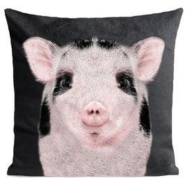 BABY PIG - SLATE GREY