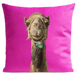 SMILING CAMEL - SWEET PINK