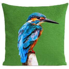 LITTLE BLUE BIRD - BRIGHT GREEN