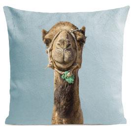 SMILING CAMEL - MIAMI BLUE