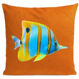 BUTTERFLY FISH - ORANGE