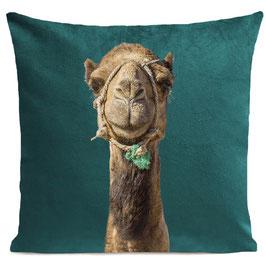 SMILING CAMEL - SCANDINAVIAN GREEN