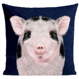 BABY PIG - DEEP BLUE
