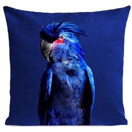 PUNKY PARROT - KLEIN BLUE