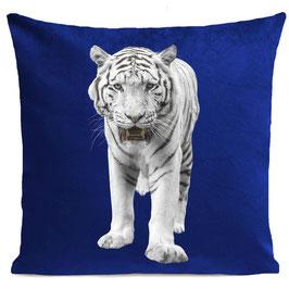 WHITE TIGER - KLEIN BLUE