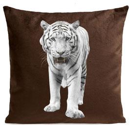 WHITE TIGER - BROWN
