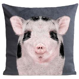 BABY PIG - MID GREY