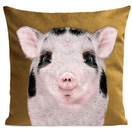 BABY PIG - MUSTARD