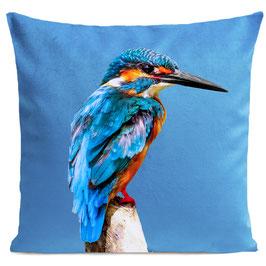 LITTLE BLUE BIRD - BRIGHT BLUE