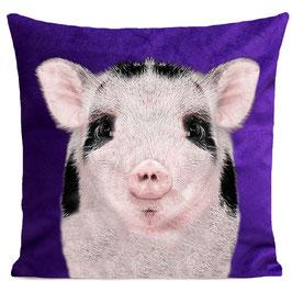 BABY PIG - PURPLE