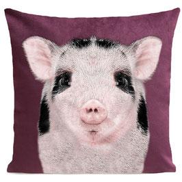 BABY PIG - PLUM