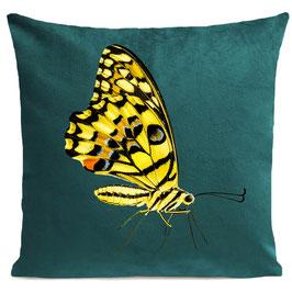 YELLOW BUTTERFLY - SCANDINAVIAN GREEN